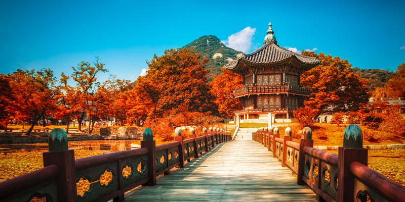 Main - South Korea